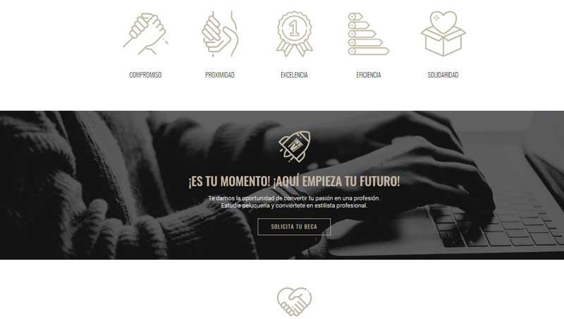 Página web de la Fundación VMV Cosmetic Group