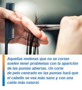 Curex therapy la loción-spray bifásica para la reconstitución de los cabello
