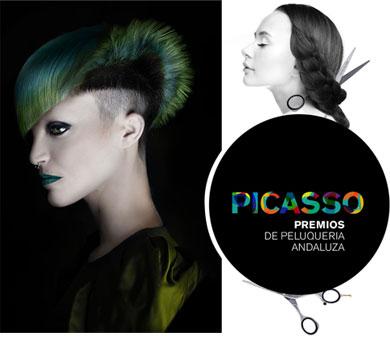 Premios Picasso