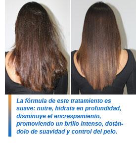 La máscara para los cabellos con el aceite de ricino y la vitamina y y