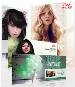 Wella Style Vision