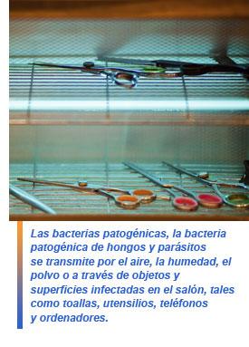 Metodos de desinfeccion y esterilizacion utilizados en Metodos de limpieza y desinfeccion en el area de cocina